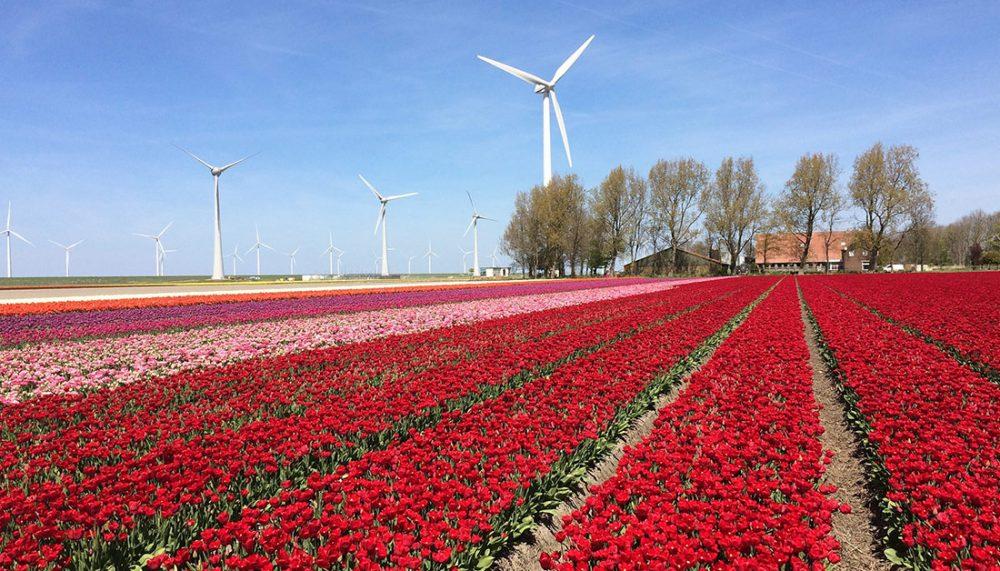 Gratis dagje uit in Flevoland